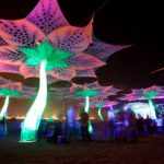 For The Love of Earthdance Cape Town 2013 | NANO Records Official